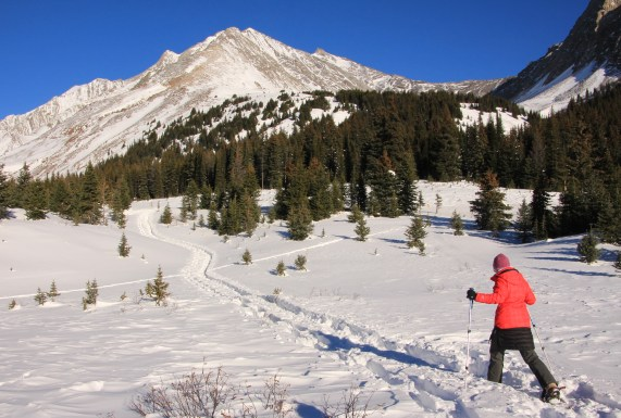 Snowshoeing at Highwood Pass, Kananaskis