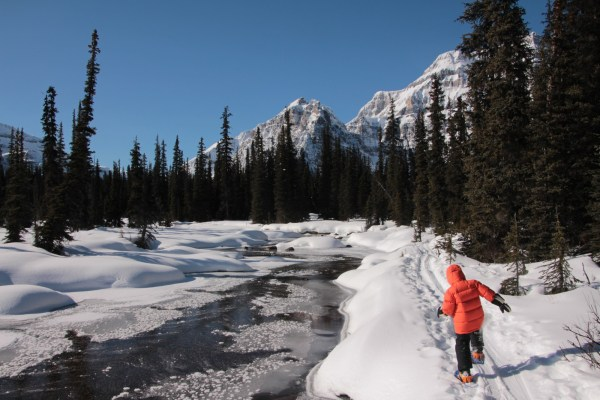 Hiking along the creek to Shadow Lake