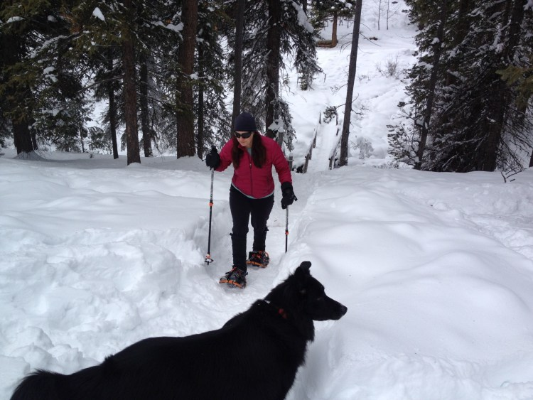 woman snowshoeing at Elkhorn Hot Springs ith dog in foreground of photo
