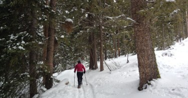 person snowshoeing in the woods