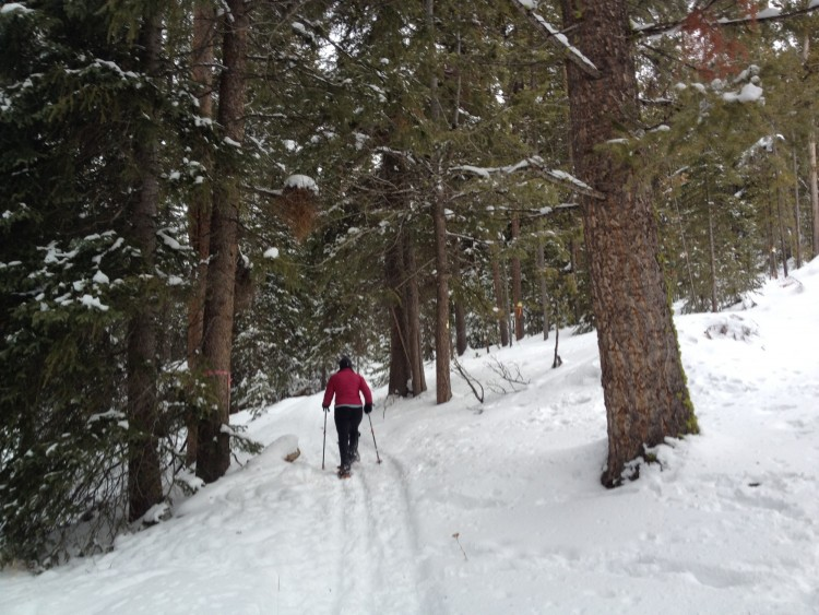 snowshoeing Elkhorn Hot Springs: person snowshoeing in the woods