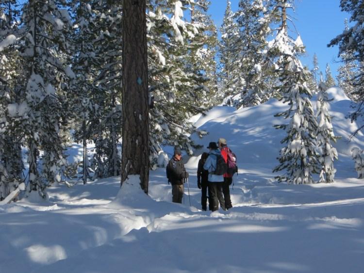 Jim Davis leaders snowshoers in central Oregon sno-park
