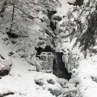 Snowshoeing in Allegany State Park, New York