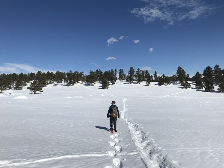 man snowshoeing in open area with snowshoe tracks and blue sky