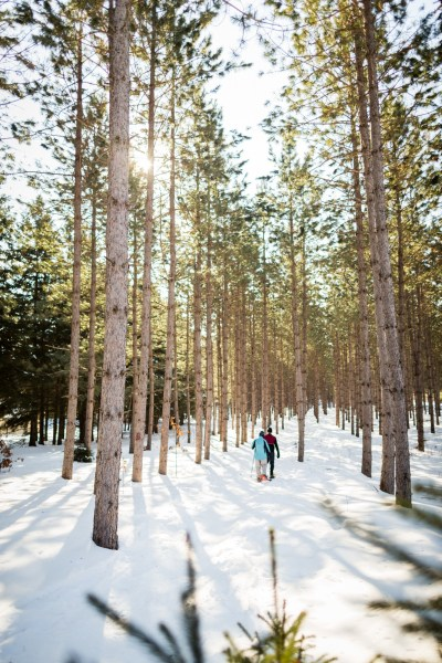 Nine Mile Forest, snowshoeing 06