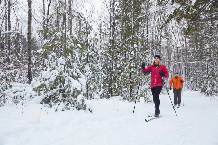 two people cross county skiing on Wisconsin Door trails