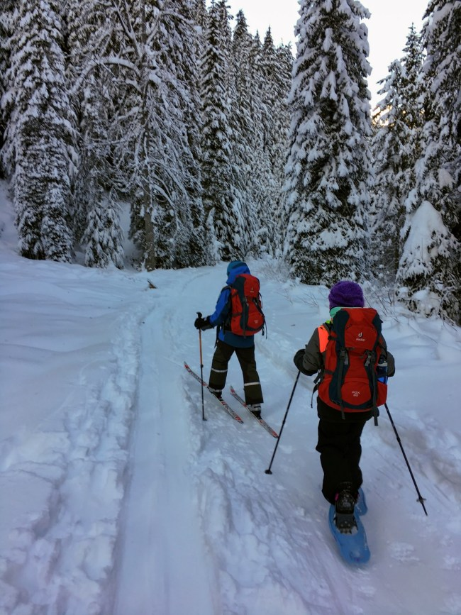 two people cross country skiing to explore