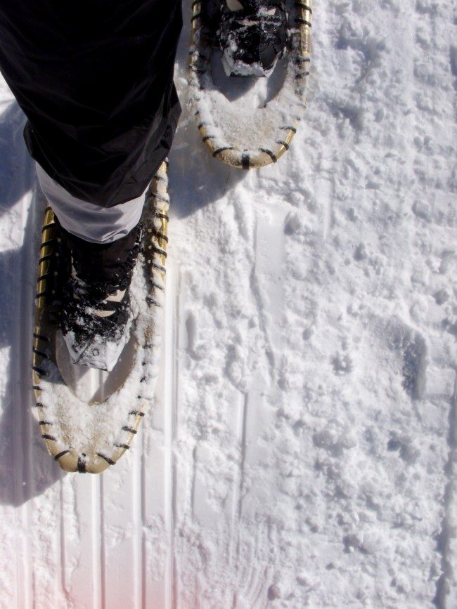 close up of home made snowshoes on snow