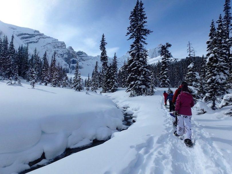 trail to Hilda Creek Wilderness Hostel