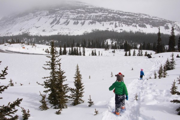 kids snowshoeing on trail near Icefields Parkway with mountains in background