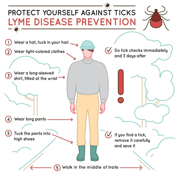 infographic of tick safety tips
