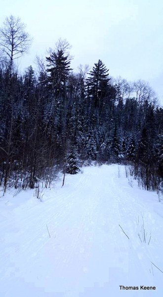 Fresh snow trails at Arrowhead