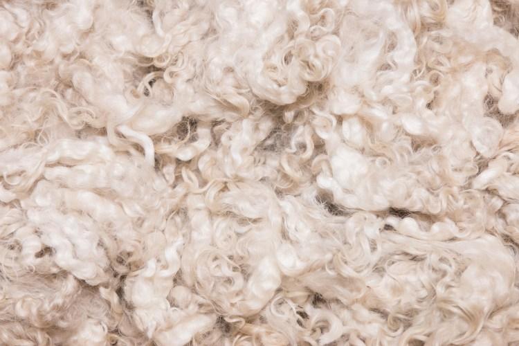 piles of unprocessed merino wool