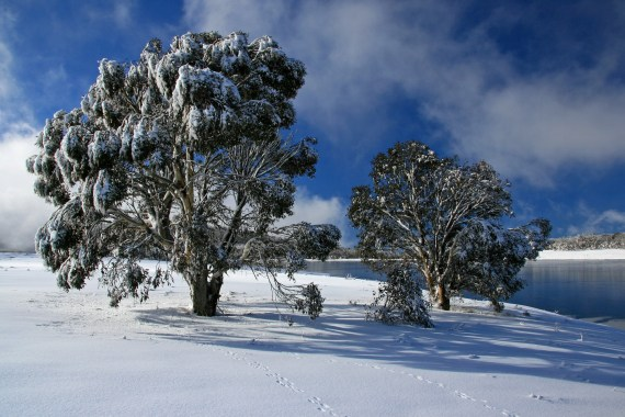 Kosciuszko National Park, Australia