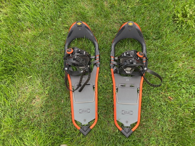 snowshoes in grass