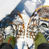 Traditional Snowshoe Bindings 101