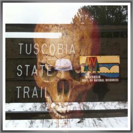 The artistic photo by ultra competitor Lynn Saari for the Tuscobia Winter Ultras.
