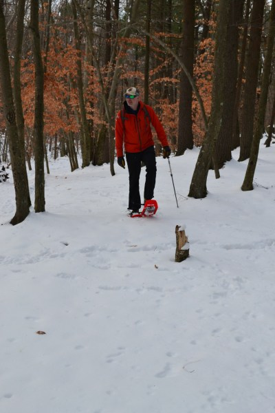 man on snowshoes in Blue Hills, snowshoeing near Boston
