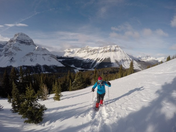Some trips are just easier on snowshoes