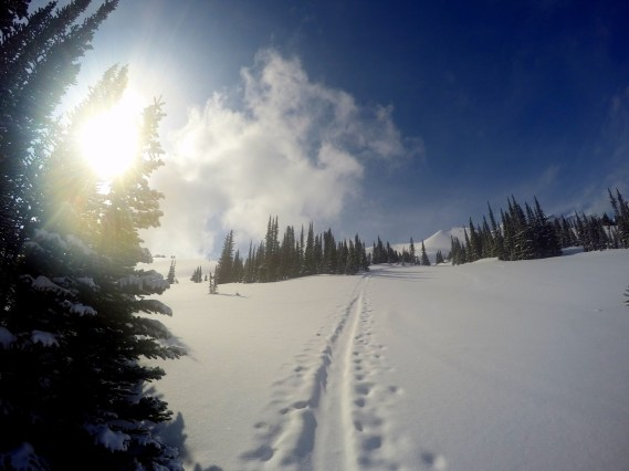 Hiking up the ski trail behind the Hilda Hostel