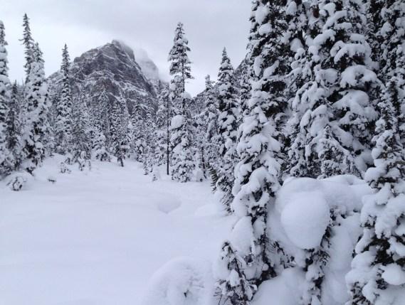 Paradise Valley, Lake Louise