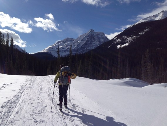 Skiing into Lake O'Hara (definitely the fastest way on the return trip)