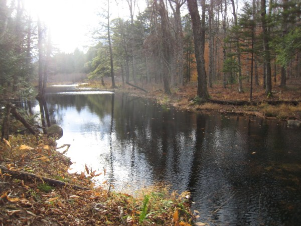 Abner Brook