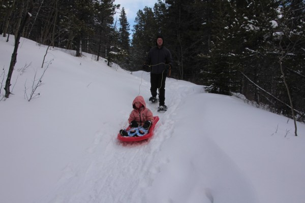 How to guide a sled down hill