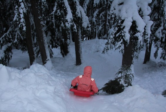 The ultimate backcountry luge track for sledding