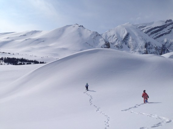 Hiking up towards the Hilda Glacier, Banff National Park