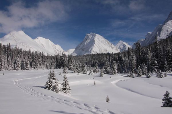 Snowshoeing across Chester Lake meadows