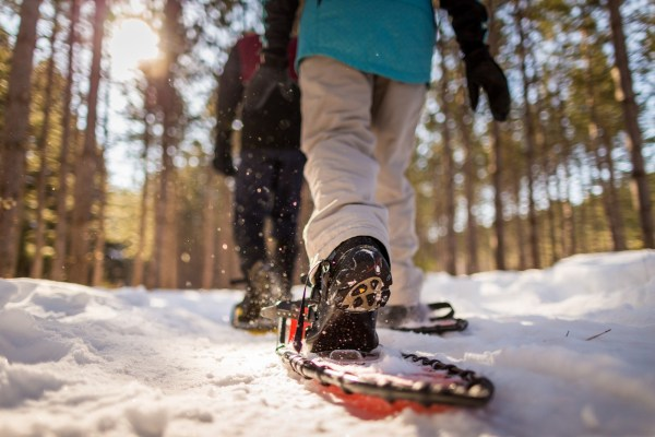 Nine Mile Forest, snowshoeing 12