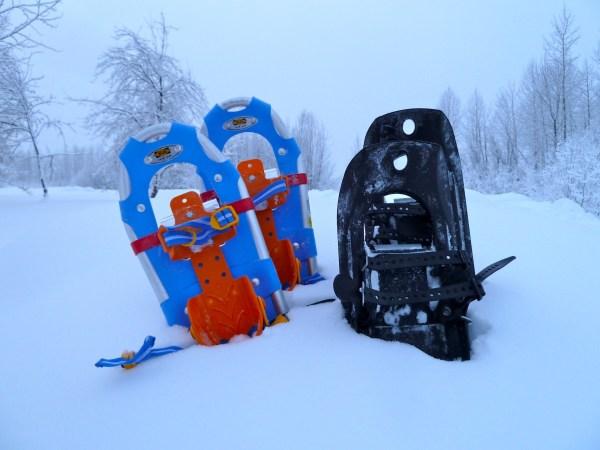 Kirkland - Talkeetna snowshoeing