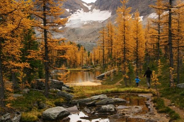 Hiking at Lake O'Hara in September