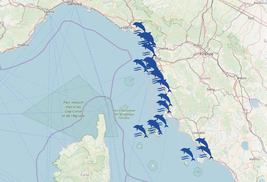 Cartina Interattiva Toscana.Mappa Interattiva E Risultati Analisi Per Gli Spiaggiamenti Di Cetacei In Toscana Snpa Sistema Nazionale Protezione Ambiente