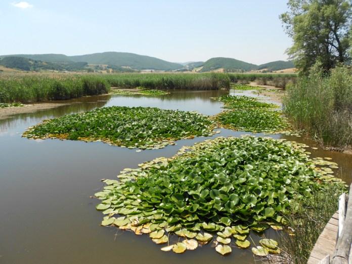 Piana di Colfiorito oasi naturalistica