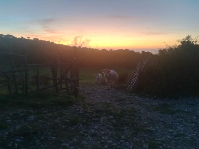 Sunset peace on Mount Guadagnolo