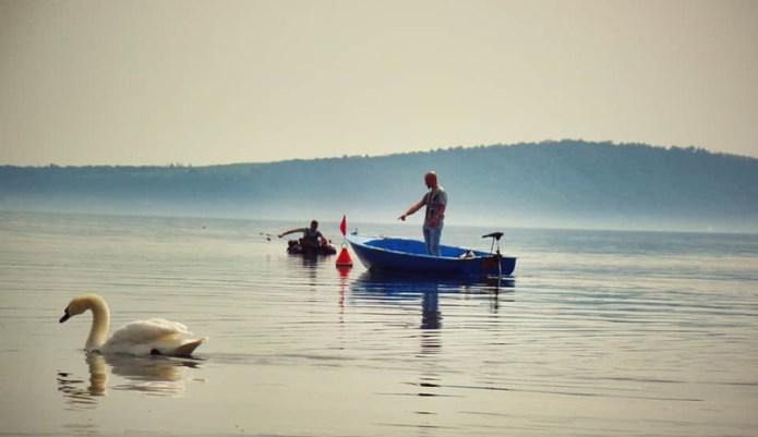 """Pesca in """"compagnia""""-Lago di Bracciano (VT)"""