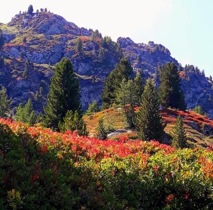 Colori autunnali verso i laghi di Bellacomba - La Thuile