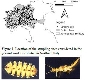 macroinvertebrati bentonici e loro distribuzione nel Distretto idrografico del Bacino del fiume Po