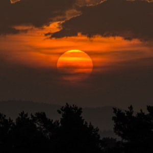 """""""Sunrise"""" by FotoArt MB is licensed under CC BY-SA 2.0"""