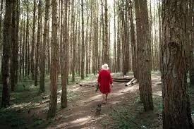 Walking To Find Wisdom