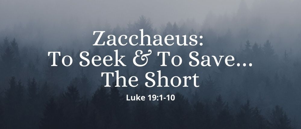 Zacchaeus: To Seek & To Save…The Short  – Luke 19:1-10