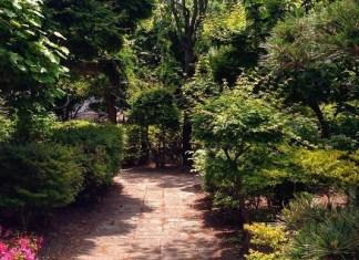 Inilah Peluang Usaha Menguntungkan Dengan Jasa Pembuatan Taman