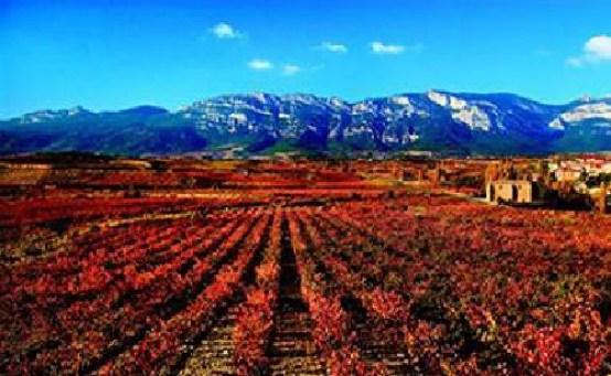 Rioja presenta un plan quinquenal