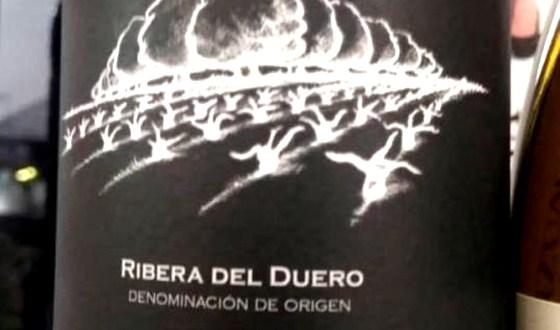 Cata Del Vino Bosque De Matasnos Edicion Limitada 2014 Ribera Del Duero Sobrelias