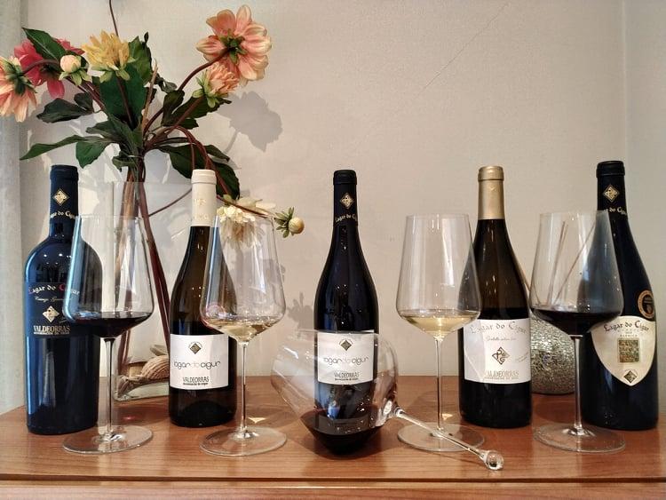 Adega Melillas e Fillos mejores vinos tintos gallegos