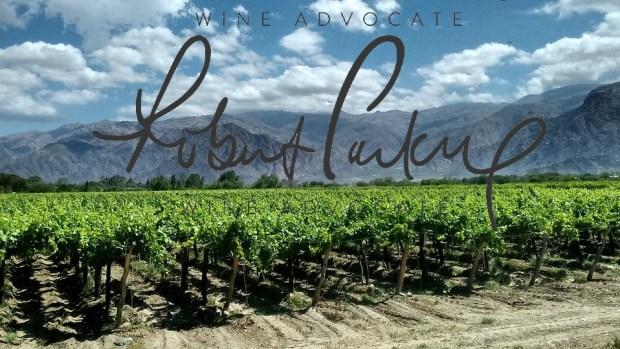mejores vinos argentinos para Robert Parker