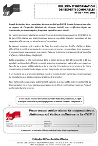 Bulletin d'information CGT Experts Comptables N°93
