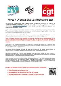 BLIZZARD ENTERTAINMENT : Appel à la grève dès le 24 novembre 2020